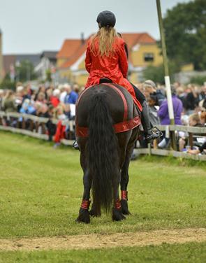Pandrup Hestevæddeløb skal være en folkefest