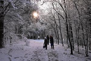 Bliv klædt billigt og godt på til den kommende vinter