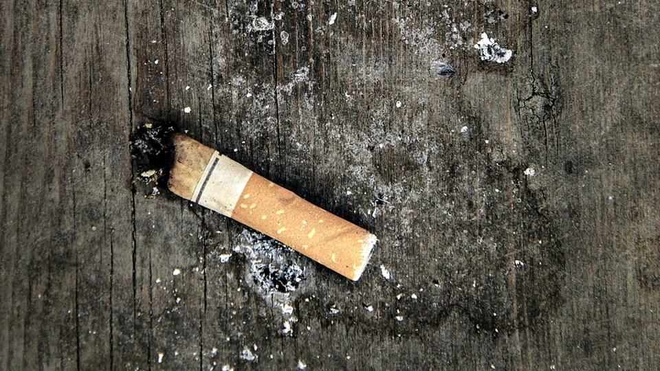 22 procent af danskerne ryger, viser en undersøgelse. Foto: /ritzau/Miriam Dalsgaard/arkiv