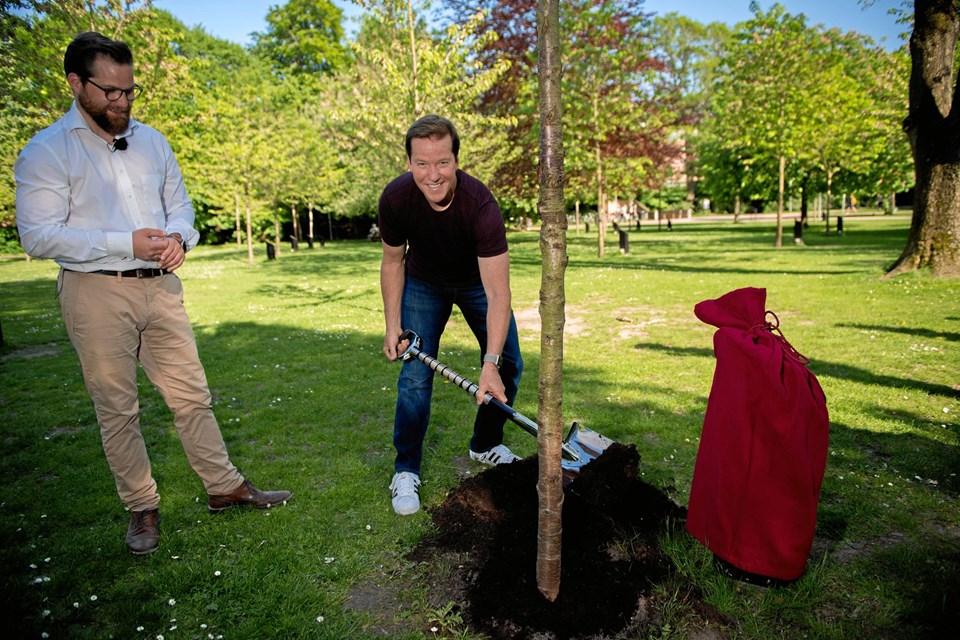 Jeff Dunham plantede tirsdag et træ i Kildeparken i Aalborg. Til venstre AKKC-direktør Nicolaj Holm. PR-foto