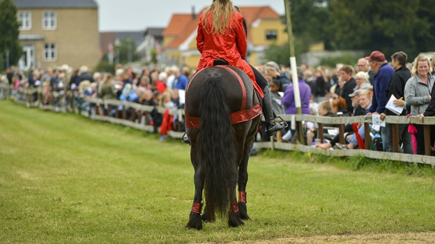 11. august er der igen hestevæddeløb i Pandrup. Arkivfoto
