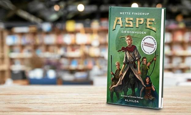 En helt nyskrevet fantasyroman kan hentes så længe lager haves i Bog & Ide i Aabybro. Privatfoto