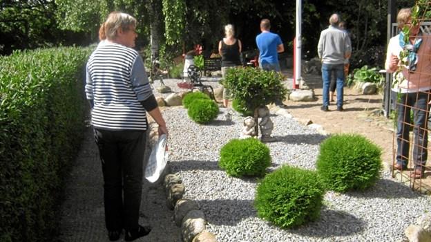 Otte-ti af byens beboere vil denne dag byde interesserede indenfor og se hvordan netop de har valgt at indrette sin have.