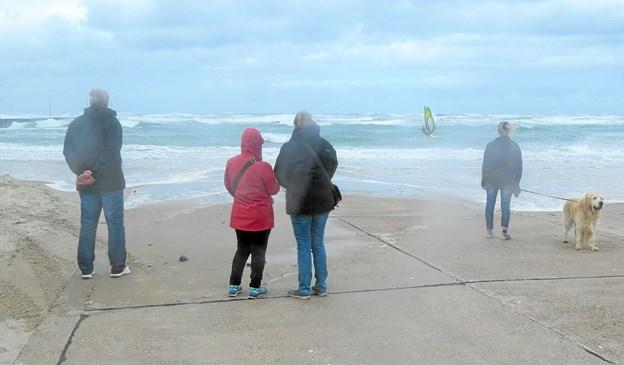 Stormturister mens stormen Johanne fejede op gennem vestkysten.  Foto: Kirsten Olsen