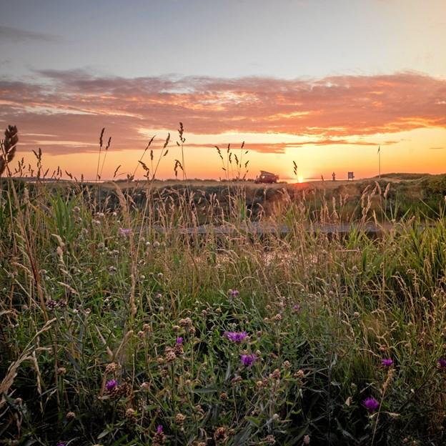VisitVesthimmerland kan tage nok så mange initiativer, men til syvende og sidst er det nok især naturen, der skal være med til at trække turister til lokalområdet. Foto: Mikkel Steensgaard