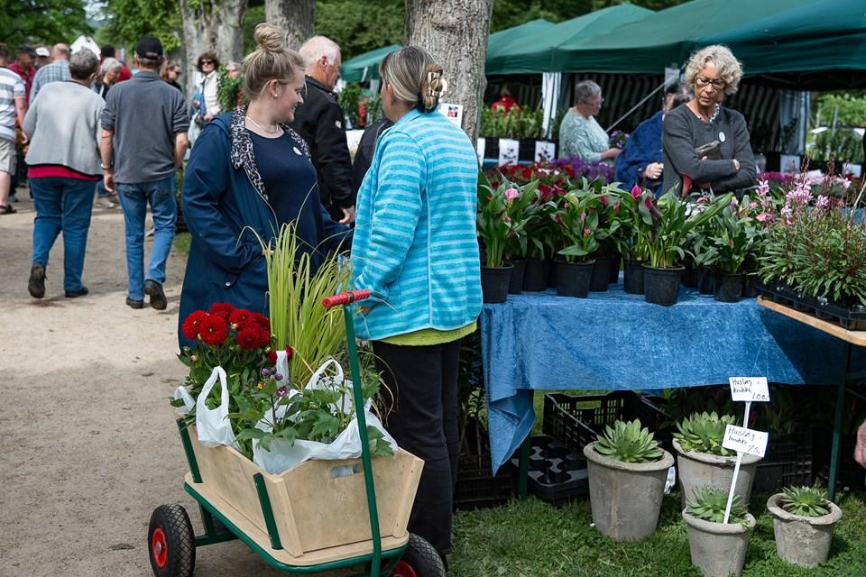 Bangsbo Blomsterfestival har åbent lørdag 2. og søndag 3. juni med blomster, udstillinger, og masser af underholdning