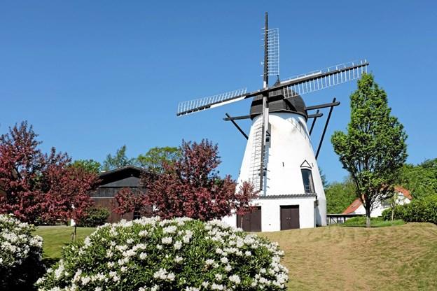 Sindal Mølle er en hollandsk muret tårnmølle, der har været anvendt som kornmølle. Dens nuværende placering på Møllebakken er fra 1872. Foto: Niels Helver
