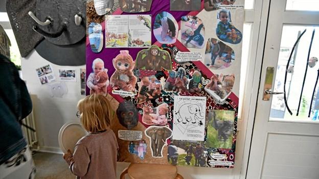 Børnenes oplevelser er illustreret på plancher, som er ophængt i alle husets rum. Foto: Niels Helver Niels Helver