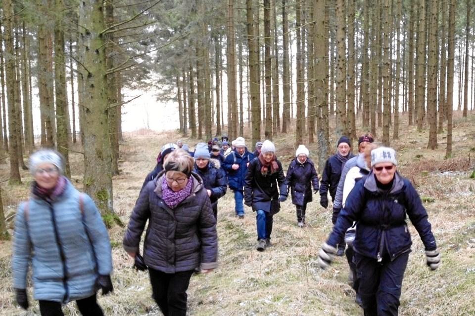Anni Engedal fra Glenstrup - her i front - guider igen Birgittaforeningens påskevandring.  Privatfoto