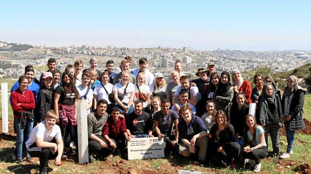 Eleverne på Dronninglund Efterskole har flere gange tidligere været nede for at plante oliventræer i Palæstina. Privatfoto