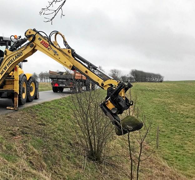 Her er en maskine i gang med at samle sten op. Efter hver vinter dukker der ny sten op af mulden, og de er til stor gene for græsslåmaskinerne. Foto: Frederikshavn Kommune