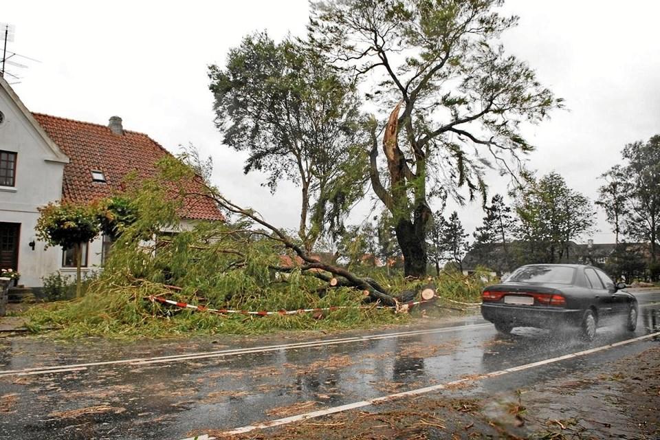 Færre skader - store storme som den, der er vist hér på billedet blev Vendsyssel forskånet for i 2018. Det er blandt årsagerne til, at GF Forsikrings lokale kunder nu får del i et millionstort overskud.  Foto: Sonny Munk Carlsen.