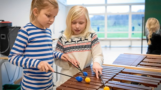 Mariagerfjord Kulturskole tilbyder bl.a. Musikalsk Grundskoleundervisning for de yngste.