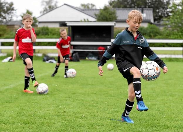 VHG-fodbold arrangerer fodboldskole i uge 27. Der er fortsat ledige pladser. Foto: Allan Mortensen