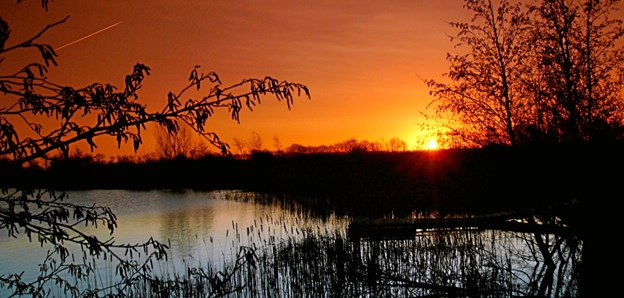 Tidlig morgen ved søerne i Tylstrup.Foto: Jette Steele Picasa