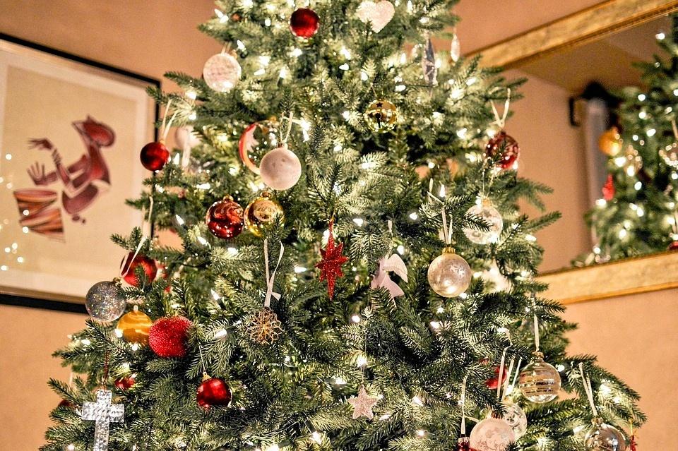 Juletræshandlen er allerede i fuld gang, og i Aalborg er der gode muligheder for at finde det helt perfekte træ. Arkivfoto: Pixabay