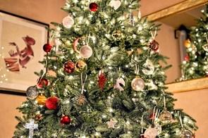 5 steder, du kan købe juletræ i Aalborg