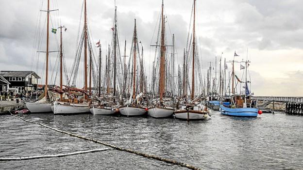 Helt tætpakket med træskibe i Frederik den VII's kanal i Løgstør. Foto: Mogens Lynge