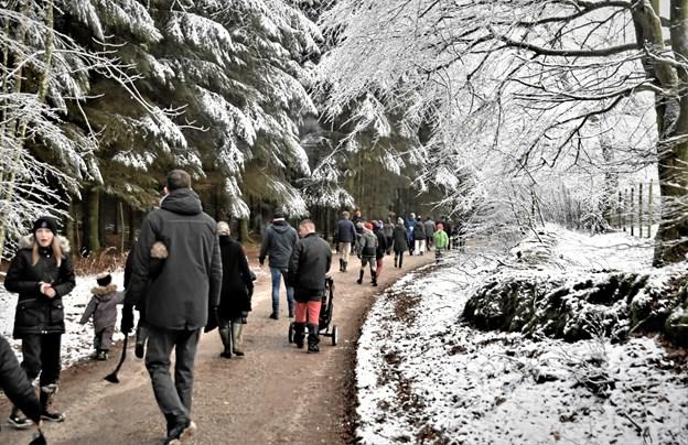 På vejen hjem kunne det smukke julelandskab atter nydes. Privatfoto