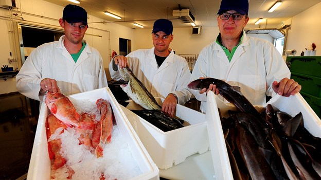 Fonfisk blev etableret i 1986 i beskedne lokaler på Hanstholm Havn af de samme tre, der i dag leder Fonfisk: fra venstre Michael Overgaard, Jørgen Beith og Carsten Beith. Arkivfoto