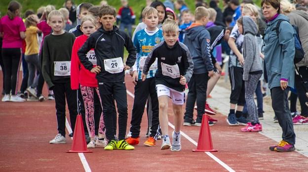 Den bedste klasse på hvert af de fire klassetrin skal deltage i en finale i juni i Aarhus.Foto: Kim Dahl Hansen Foto: Kim Dahl Hansen