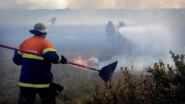 Nu begynder sæsonen for naturbrande. Arkivfoto: Peter Mørk
