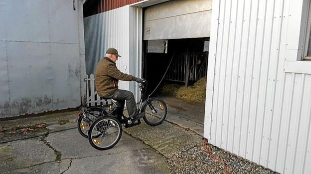 På vej ind i stalden for at fodre dyrene. Foto: Karl Erik Hansen