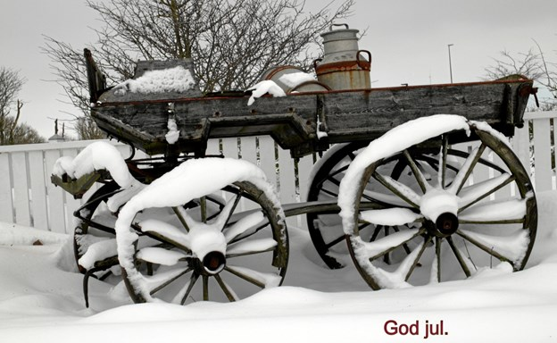 God jul. Foto: Jette Steele