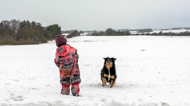 Andrea og Aya hygger sig med snebolde. Foto: Randi Møgelmose