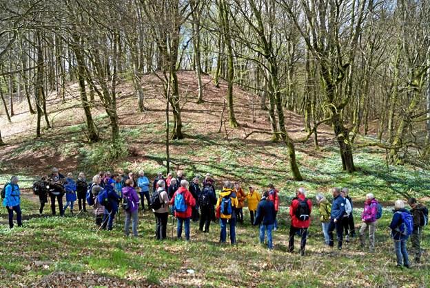 En flok pilgrimsvandrere samlet i den smukke natur omkring Mariager. Privatfoto