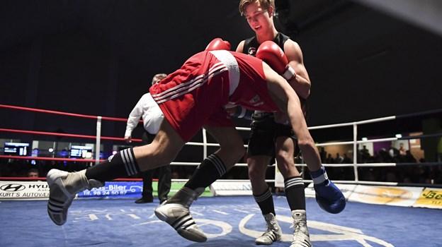 Frederik Lundgaard Jensen er igen det lokale hovednavn til årets boksestævne i Aabybro. Arkivfoto Claus Søndberg
