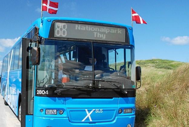 I perioden 3. juli til 10. august tilbyder Rute 88 turister og interesserede thyboer tre forskellige ruter. Privatfoto