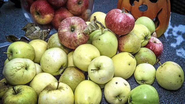 Havefolket er ved at drukne i æbler. Til lørdagens Æblefestival i Hvidbjerg, kan høsten laves til dejlig æblesaft. Foto: Ole Iversen