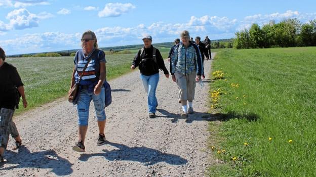 2. pinsedag, 10. juni, vandres mellem de tre kirker i Øls, Hørby og Døstrup.    Privatfoto