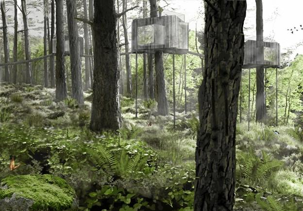 Løvtag drømmer om at opføre flere hytter i skoven i fremtiden. Hytten er tegnet af arkitekt Sigurd Larsen. Illustration: Løvtag
