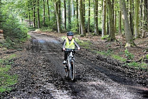 Der blev kørt stærkt - også på skovvejene.Foto: Hans B. Henriksen