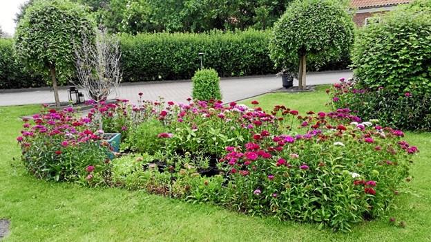 """Der er mødested på Lørslev Cafe & Kulturhus på Ugiltvej, og herfra vil blive udleveret et lille rutekort med påtegning af, hvor de """"åbne haver"""" findes og hvilket tema der er for den enkelte have."""