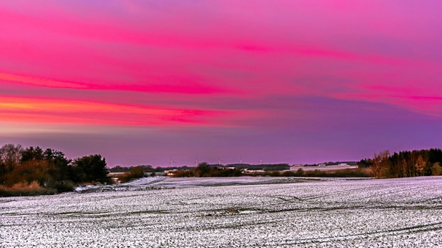 """Himlen juleaftens dag - efter solen er gået ned. Syv minutters """"fyrværkeri"""" Sterup Vestermark. ?Foto: Randi Møgelmose"""