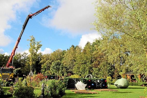 Gør klar til Magisk Jul  i Skulpturparken