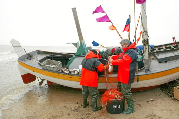 Elbo sejler ud mellem 30 til 40 gange hvert år. Nogle af bådelagets medlemmer er meget aktive, mens andre kun sjældent tager med ud. Privatfoto