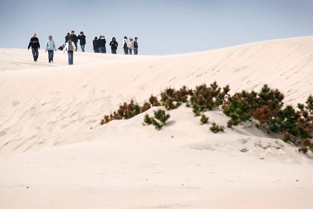 Raabjerg Mile er nu med i Danmarks Naturkanon