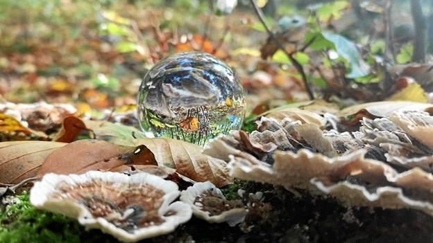 Lidt leg med en krystalkugle. Foto: Bente Lassen