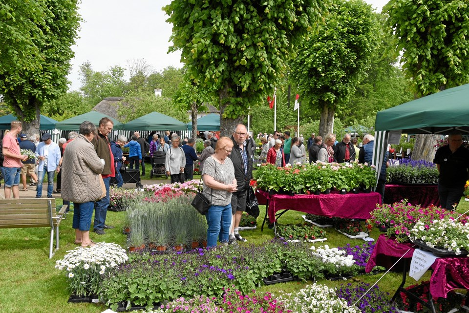 """I 110 pavilloner inviterer haveforeninger, """"amatørgartnere"""", planteskoler, organisationer og foreninger indenfor.Privatfoto"""