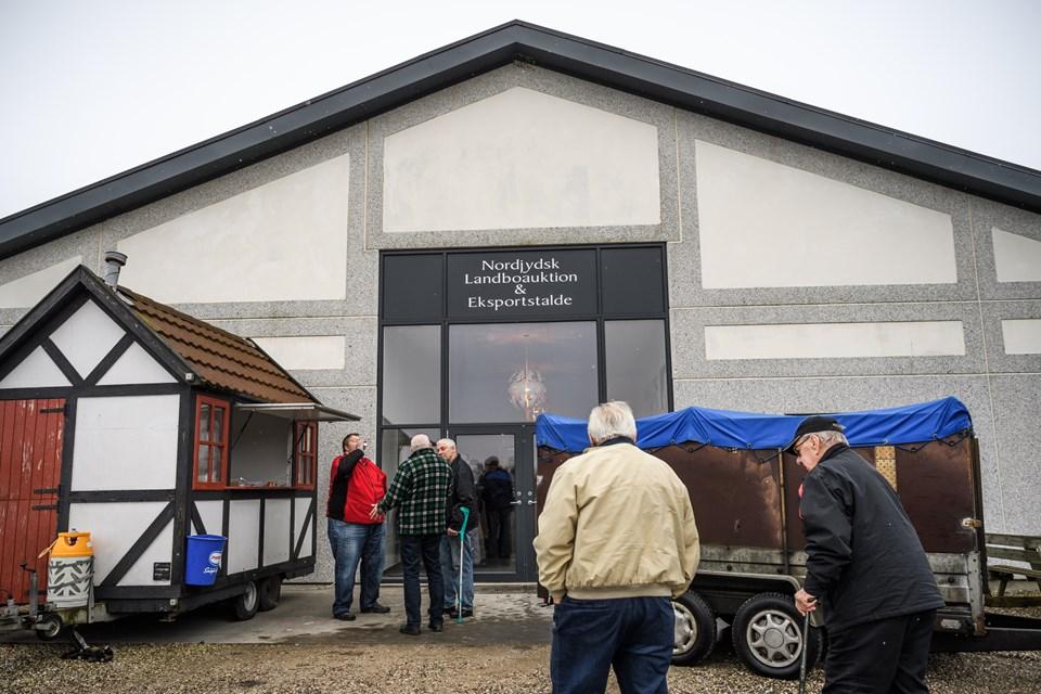 Det var her bag Nordjysk Landboauktion og Eksportstaldes bygning i Kgs. Tisted, kvien valgte at stikke af inden den blev læsset på en lastbil af sin nye ejer fra Hjallerup. Arkivfoto Nicolas Cho Meier