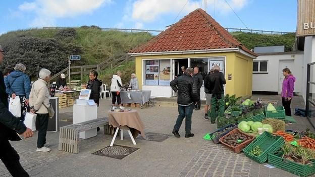 Den lille kunstpavillon var sidst åben i forbindelse med Molefestivalen. Foto: Arkivfoto