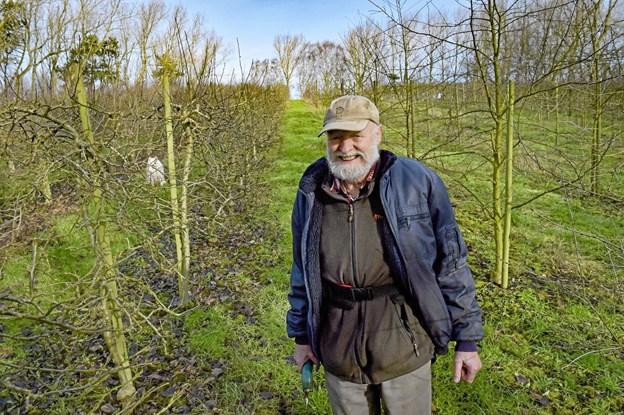 Den 79-årige passionerede frugt- og vinavler har besluttet at sæson 2019 bliver den sidste. Foto: Ole Iversen Ole Iversen