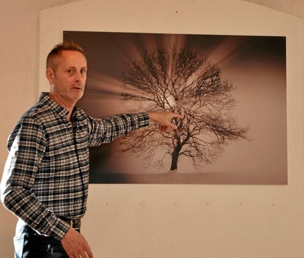 Fotograf Ole Sejfert forklarer, hvordan han en meget tåget dag fik taget dette billede. Han ventede, til solen stod lige bag træet. Foto: Ole Torp