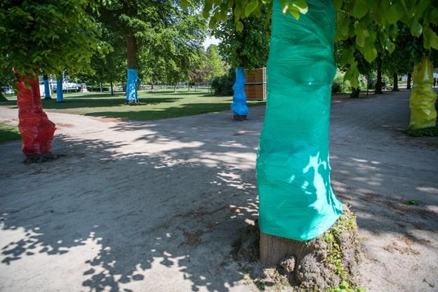 Kildeparkens store træer har fået pangfarvet plastik rullet rundt om stammerne for at man kan bruge farverne til at orientere sig efter.
