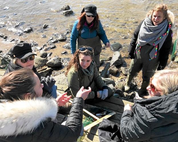 Hals Skole havde for nylig besøg af en gruppe lærere og ledere fra 3 skoler i London. Privatfoto Allan Mortensen