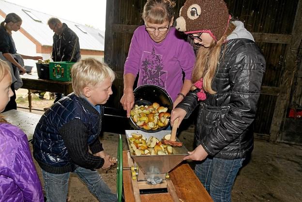 Ved hytterne kunne de besøgende få presset egne æbler til saft. Levi, Tove og Liv findeler æblerne, inden de presses til æblemost. Foto: Niels Helver